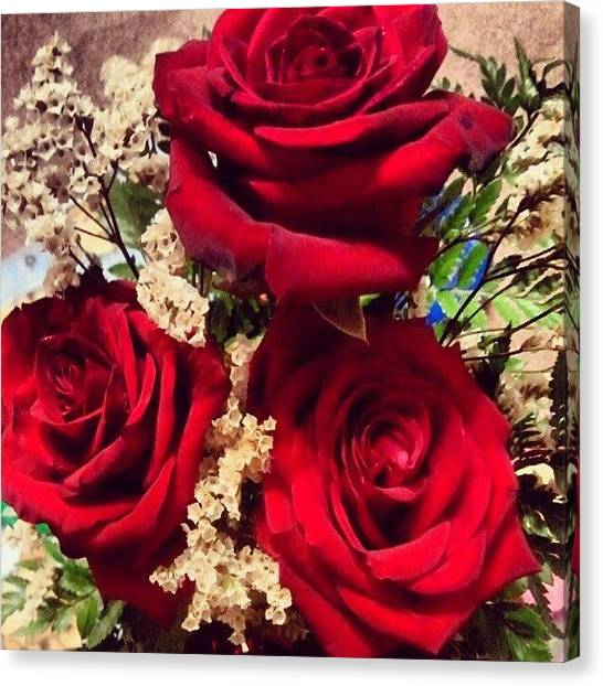 Anniversary Canvas Print - 3 Red Roses To Celebrate My 1year by Tracy Hager