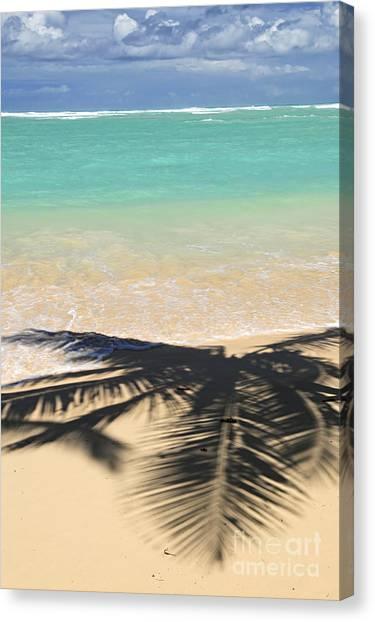 Beach Resort Vacation Canvas Print - Tropical Beach by Elena Elisseeva