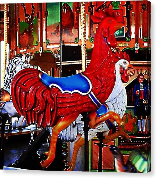 Roosters Canvas Print -  by Stephanie Thomas