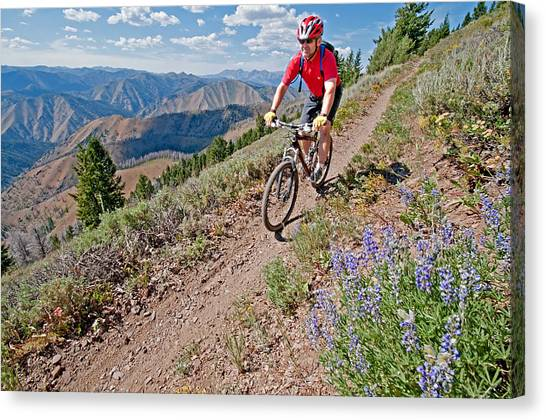 Mountain Bike Canvas Print by Elijah Weber