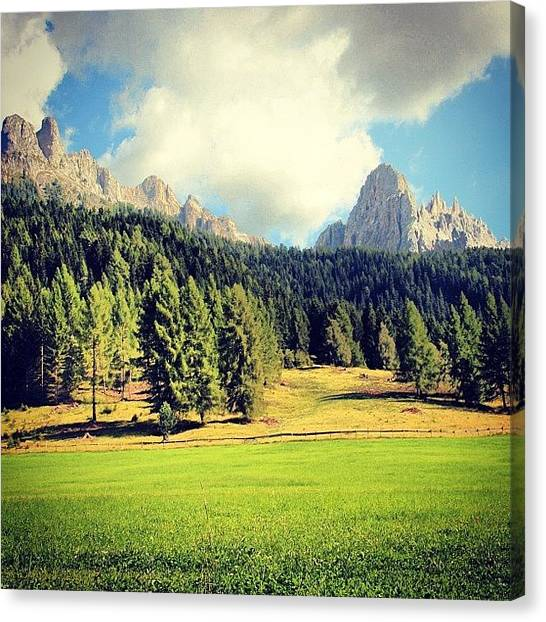 Woods Canvas Print - Dolomites by Luisa Azzolini