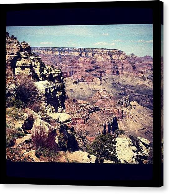 Wilderness Canvas Print - Grand Canyon by Isabel Poulin