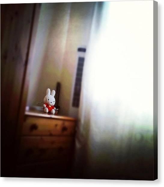 Rabbits Canvas Print - Instagram Photo by Daniel Mitchell