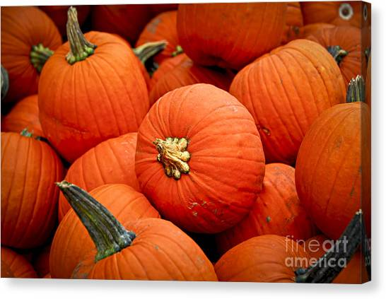 Vegetable Stands Canvas Print - Pumpkins by Elena Elisseeva