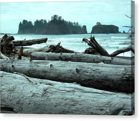 Rialto Beach La Push Canvas Print
