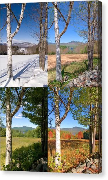 4 Seasons Chocurua Vertical Canvas Print
