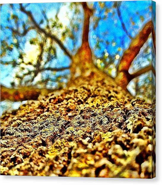 Iphone 4s Canvas Print - Instagram Photo by Matt Turner