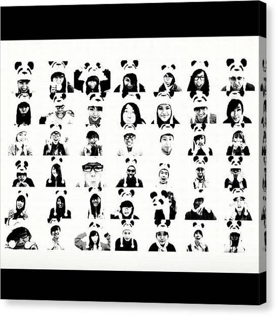 Panda Canvas Print - 42 Pandas. I Miss The 40 Of Them So So by Aklili Zack