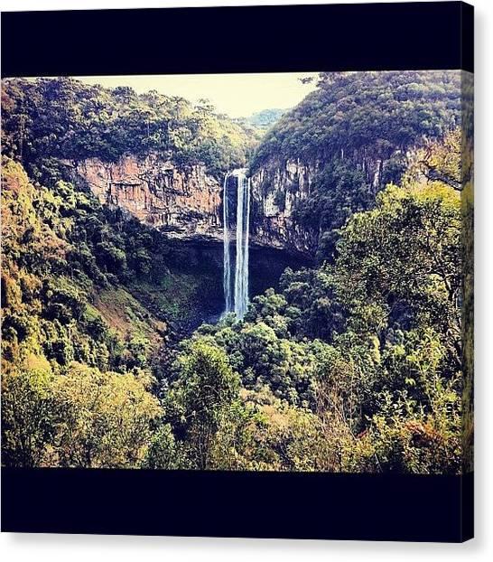 Jungles Canvas Print - Instagram Photo by Rodolfo Nutzmann
