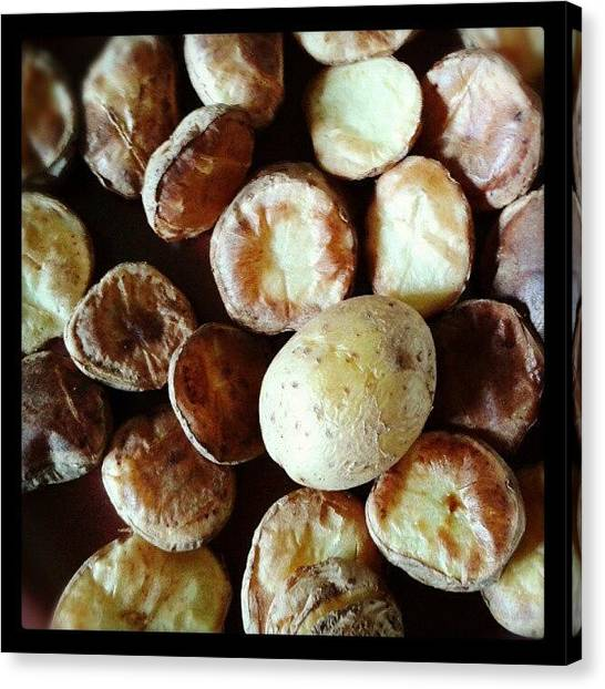 Potato Canvas Print -  by Glusia I