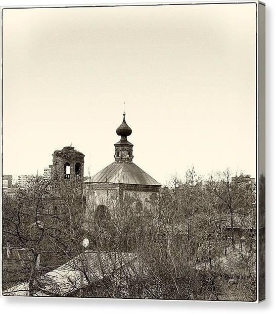 Dove Canvas Print -  by Grigorii Arzhanykh