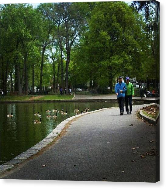 Geese Canvas Print - Instagram Photo by Mike Papadopoulos