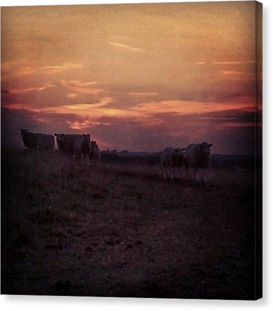Back Canvas Print - Instagram Photo by Ole Back