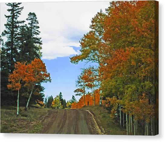 Fall Colorado Series Canvas Print