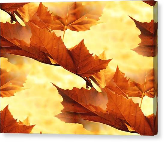 Autumn Canvas Print by Design Windmill