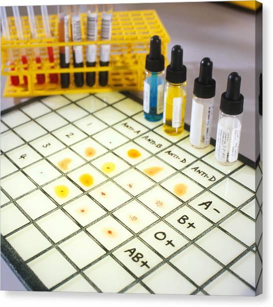 Blood Typing Canvas Print by Tek Image