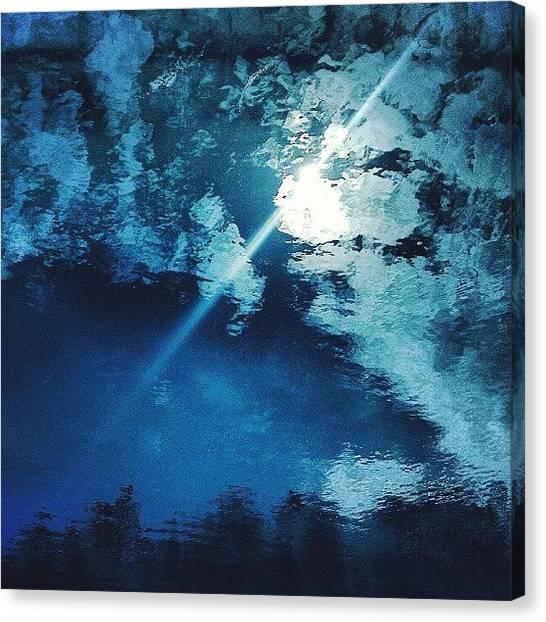 Swans Canvas Print - #instamood #instagood #bestagram by Taras Paholiuk