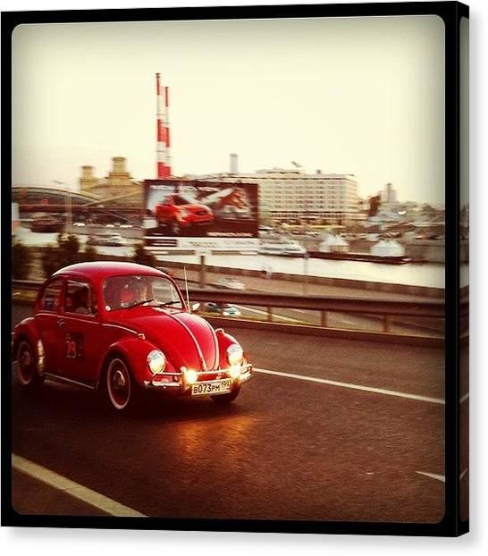 Beetles Canvas Print - Instagram Photo by Eugene / Arzamastsev