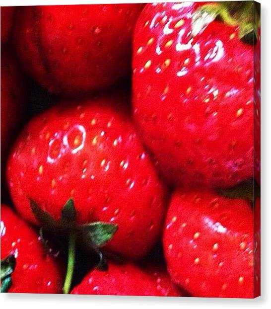 Strawberries Canvas Print -  by Amanda Wignall