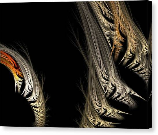 Ferns Canvas Print by Michele Caporaso