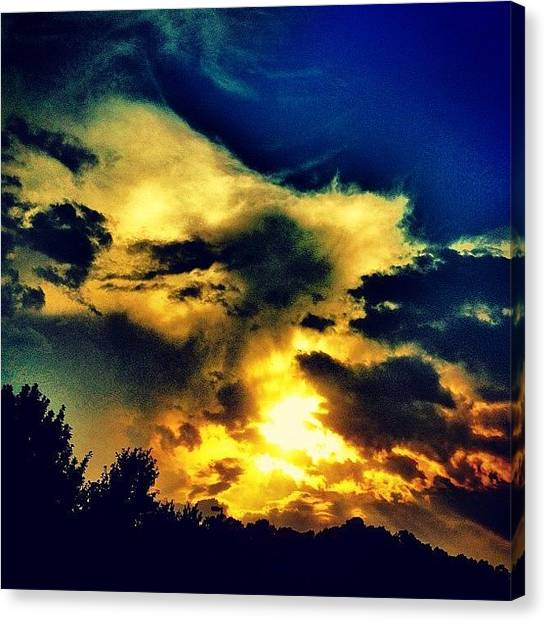 Orange Tree Canvas Print - Sunset by Katie Williams