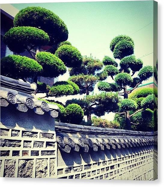 Korean Canvas Print - Instagram Photo by Roxanne Soko
