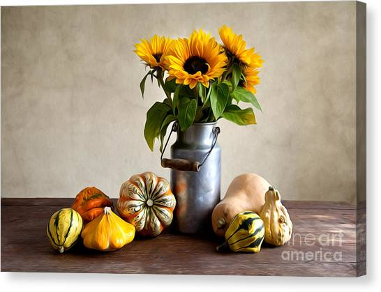 Pumpkins Canvas Print - Autumn by Nailia Schwarz
