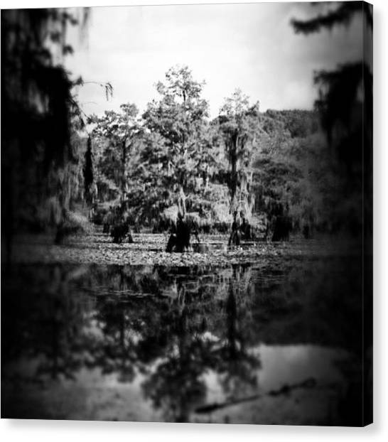 Swamps Canvas Print - Instagram Photo by Sherri Galvan
