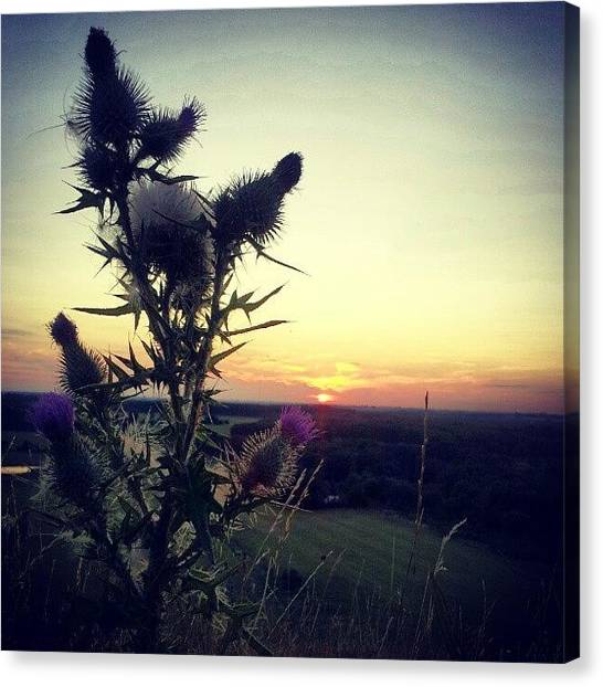 Back Canvas Print - A Beautiful Evening Tonight Up Here :) by Ole Back