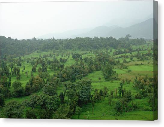 A Beautiful Green Countryside Canvas Print