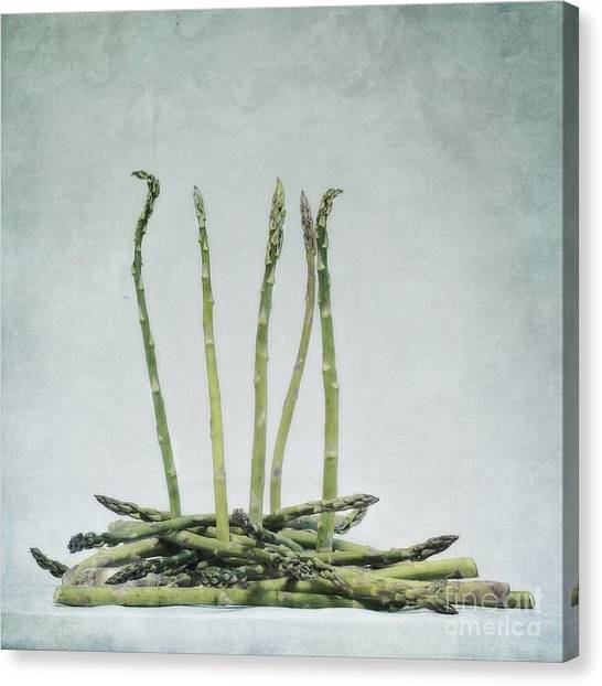Asparagus Canvas Print - A Bunch Of Asparagus by Priska Wettstein
