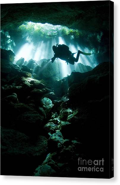 Underwater Caves Canvas Print - A Cavern Diver Enters The Taj Mahal by Karen Doody