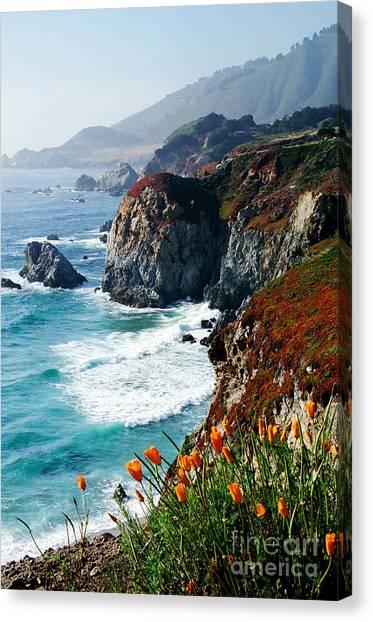 A Coastal High Canvas Print