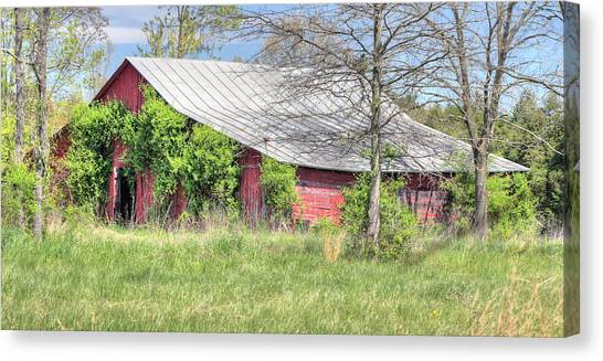 A Country Spring Canvas Print by JC Findley