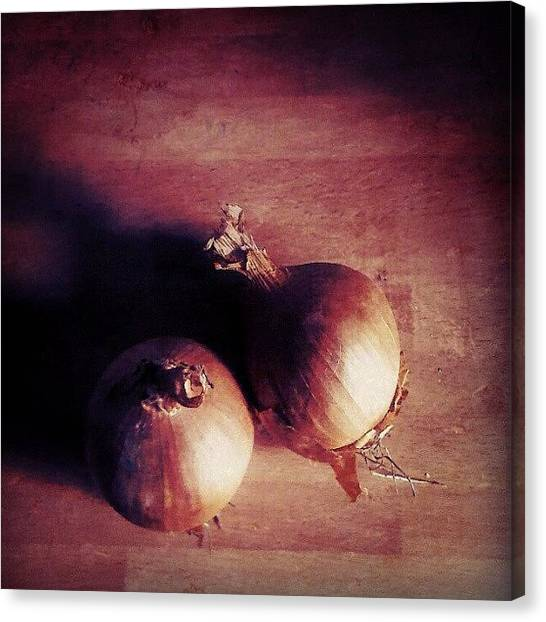 Onions Canvas Print - A Couple Of #onions In The #kitchen by Alexandra Cook