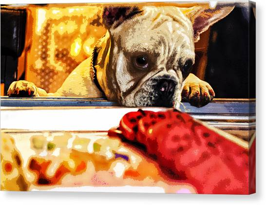 French Bull Dogs Canvas Print - A Dog And His Cookies by Susan Stone