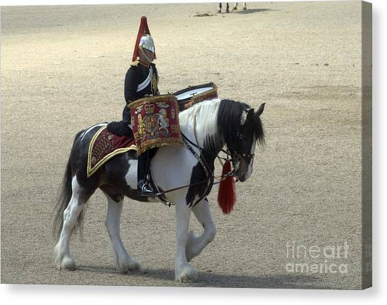 Royal Guard Canvas Print - A Drum Horse Of The Household Cavalry by Andrew Chittock