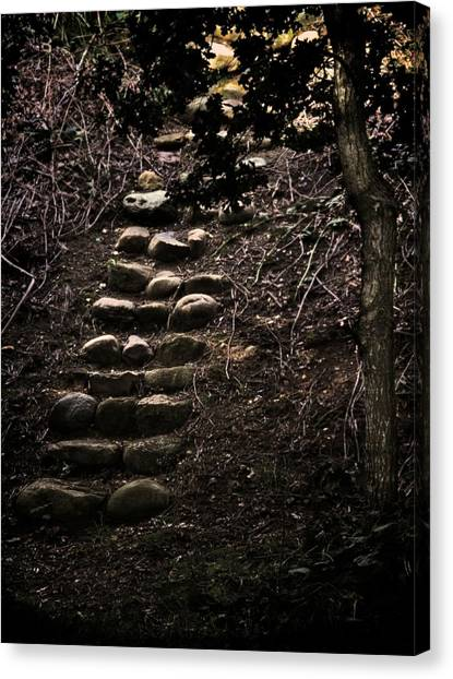 A Few More Steps Canvas Print by Odd Jeppesen
