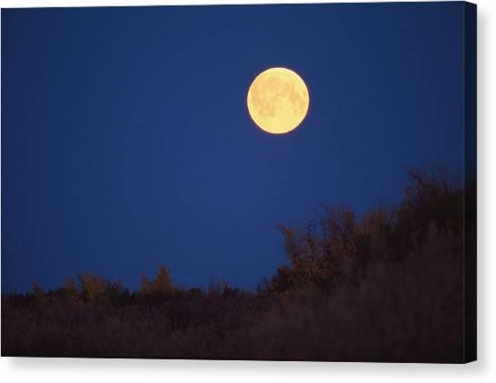 Northwest Territories Canvas Print - A Full Moon Rises Above The Mackenzie by Raymond Gehman