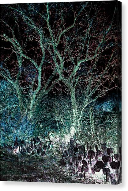 A Ghost Story Told On March Road Canvas Print