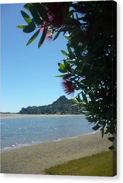 A Kiwi Summer Canvas Print by Amy Jayne Roper