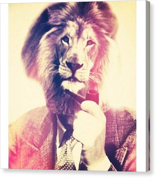 Lions Canvas Print - A Lion Man Smoking A Pipe by Phillip Martin