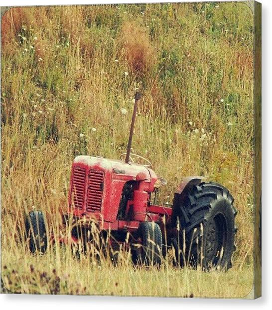 Machinery Canvas Print - A Little Red Tractor by Alexandra Cook