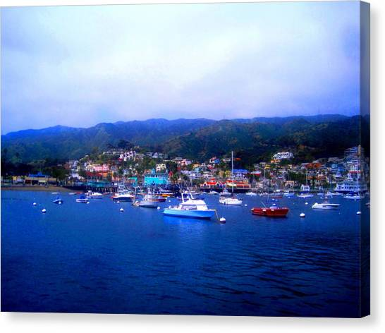 A Misty Morning In Avalon Harbor Canvas Print by Catherine Natalia  Roche