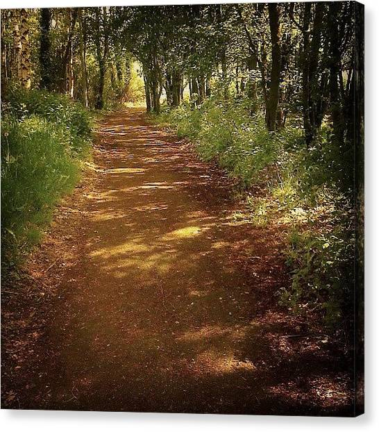 Forest Paths Canvas Print - A #path ... #woods #forest #green by Alexandra Cook
