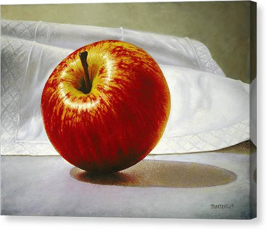 A Red Apple Canvas Print