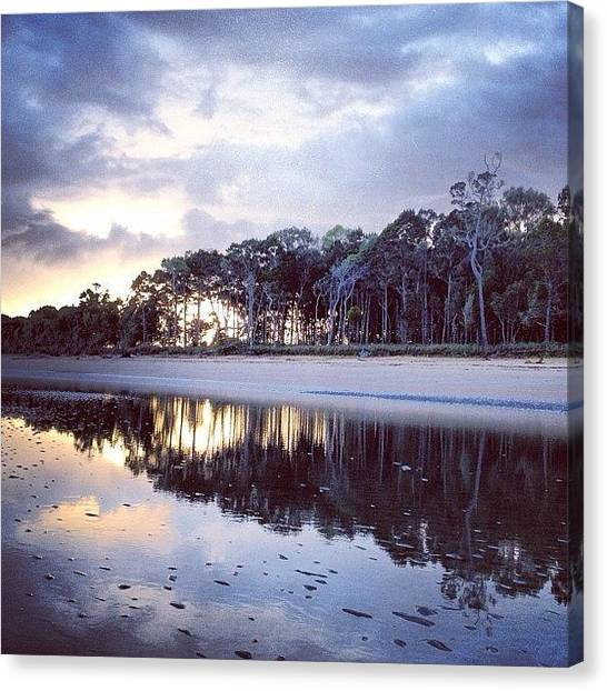 Whales Canvas Print - A Serene Morning #burrum_heads by Shayle Graham