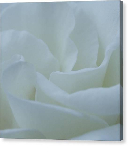 A Soft Embrace Canvas Print