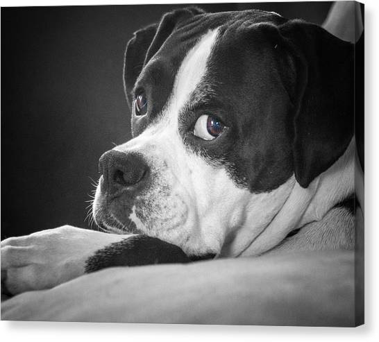 A Soulful Expression Canvas Print
