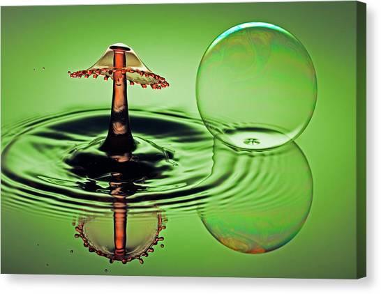 A Splash And A Bubble Canvas Print